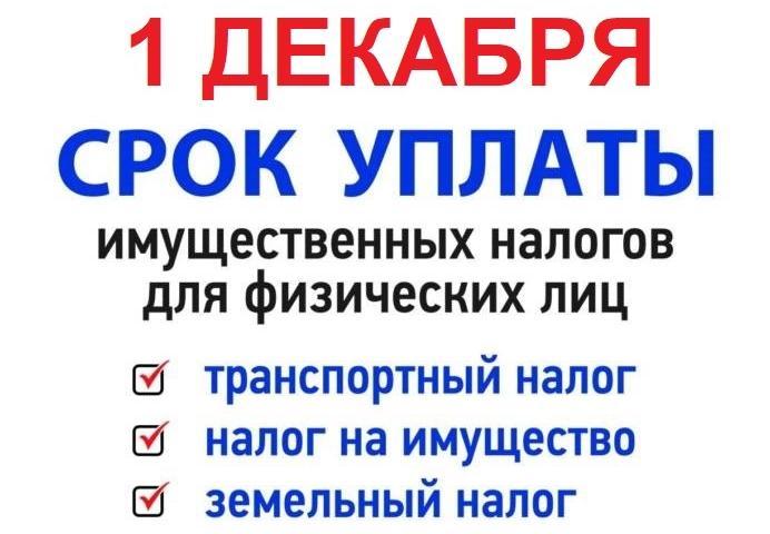 1 декабря - срок уплаты имущественных налогов для физических лиц
