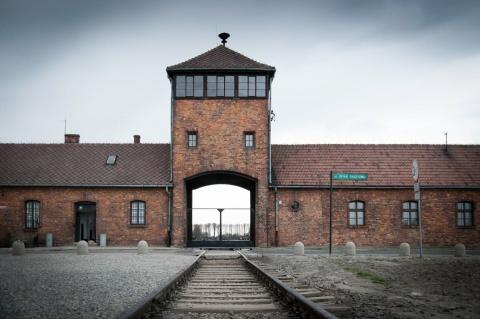 Новочигольская библиотека. Освенцим