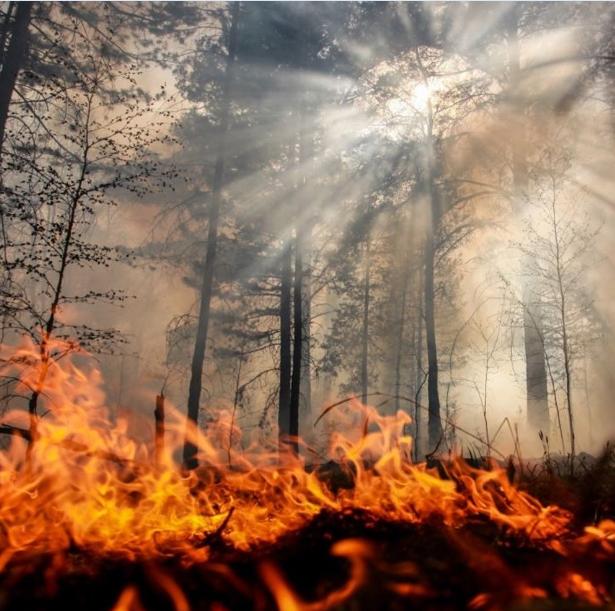 Риск природных пожаров, Безопасность на воде