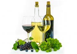 О проведении акции «Дни российских вин» в 2019 году