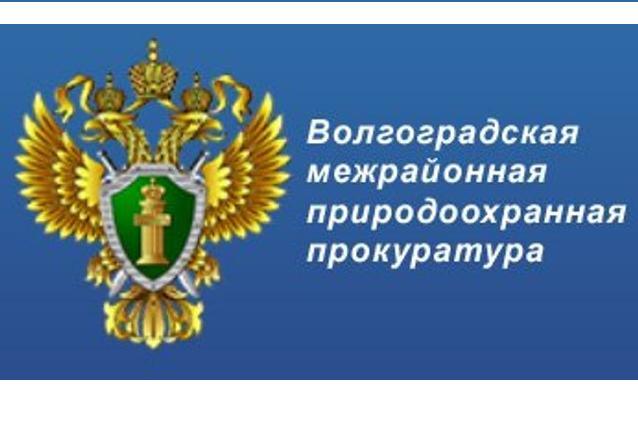 Волгоградской межрайонной природоохранной прокуратурой приняты меры к нарушителям!