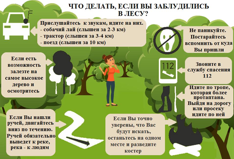 Как не заблудиться в лесу, что делать если заблудился в лесу?