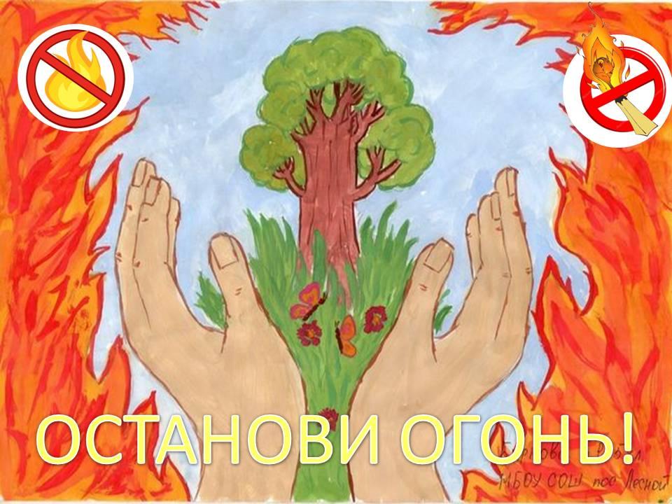 Остановите огонь!  Орловские пожарные ликвидировали более 2000 загораний сухой растительности