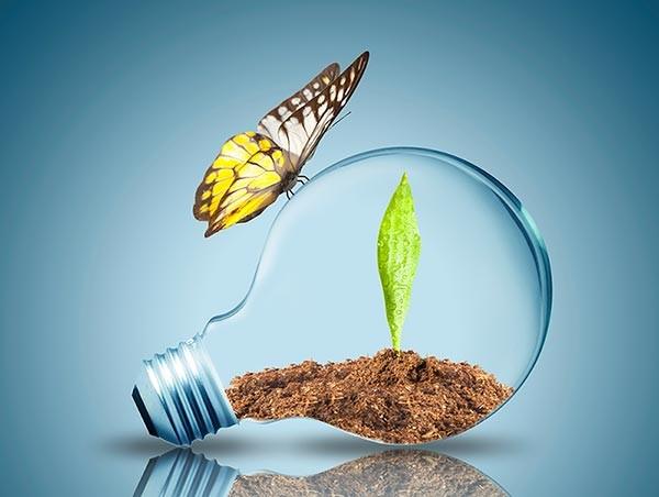 Памятка для потребителей  Энергосбережение в быту