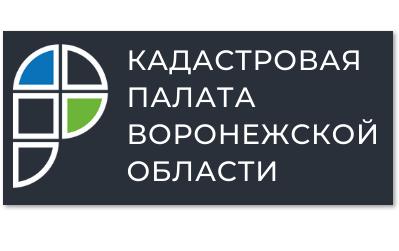 Воронежцы могут сообщить о технической ошибке в ЕГРН через соцсети