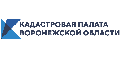 Граница между Воронежской и Волгоградской областями внесена в ЕГРН
