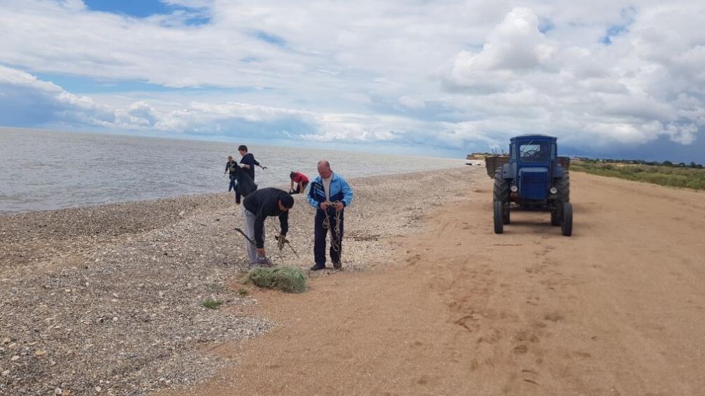 На побережье Азовского моря провели уборку