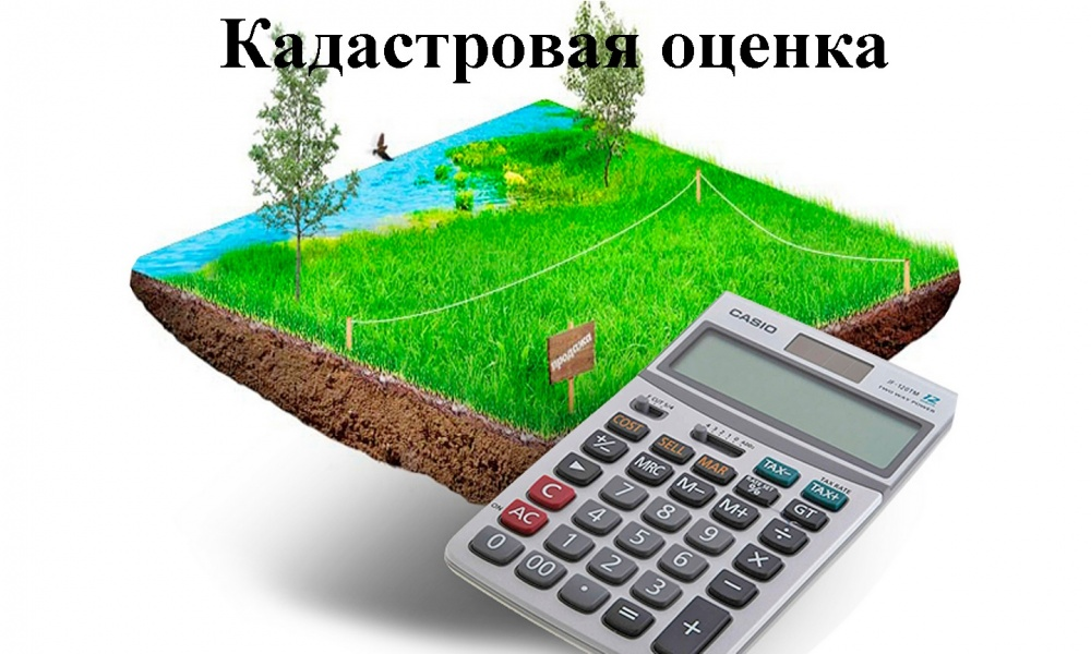 Краевое БТИ информирует О проведении государственной кадастровой оценки на территории Краснодарского края в 2019 и 2020 годах