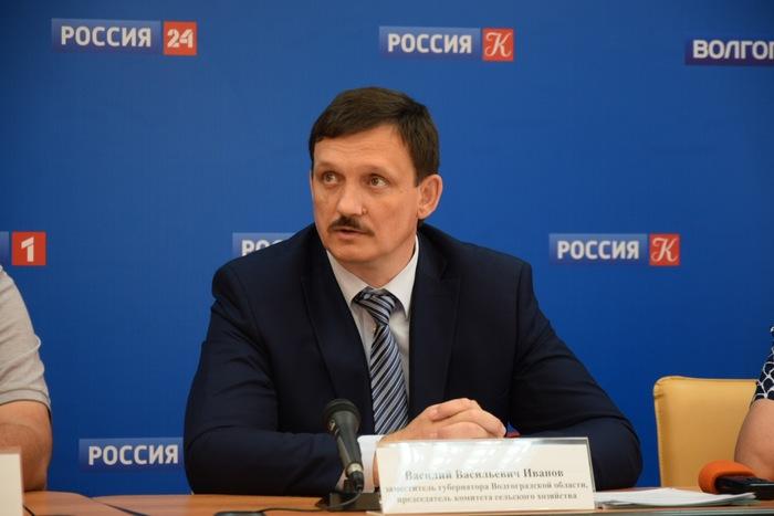 Обращение заместителя Губернатора Волгоградской области В.В.Иванова