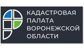 Воронежцев с незарегистрированной недвижимостью начнут искать с 29 июня