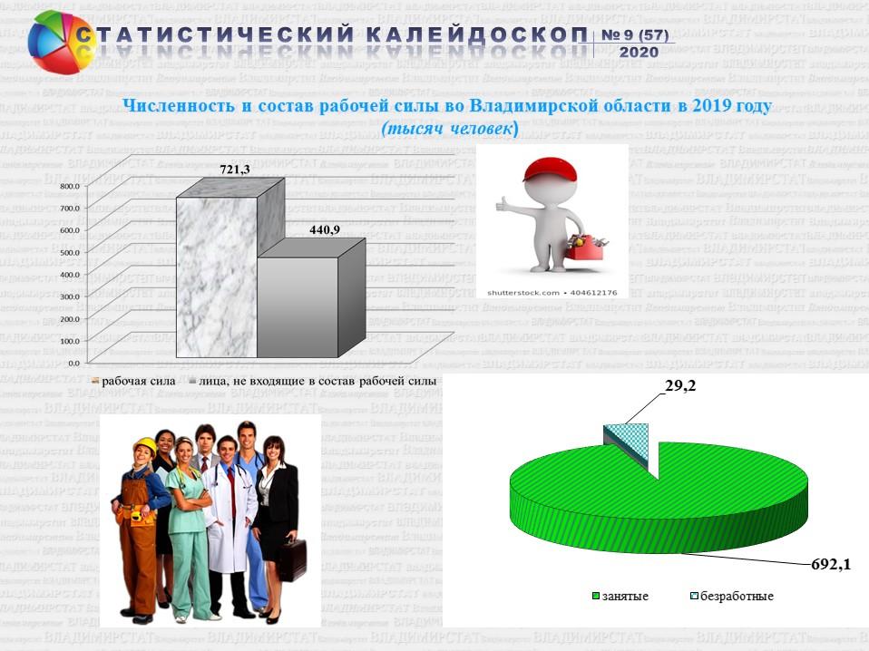 Занятость и безработица  во Владимирской области в 2019 году ( по итогам обследования рабочей силы)
