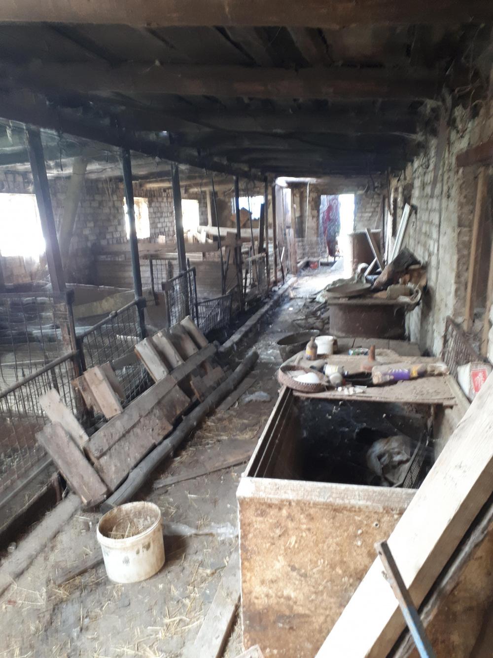 Проведено  ветеринарно – санитарное обследование территорий, входящих в бывшую первую угрожаемую зону по африканской чуме свиней на территории Приволжского района