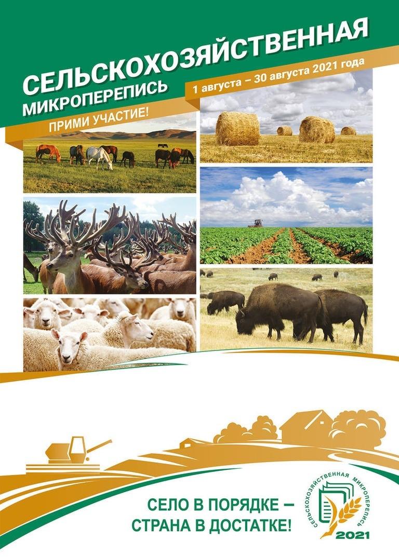 Информация о ходе сельскохозяйственной микропереписи на территории Кущевского района