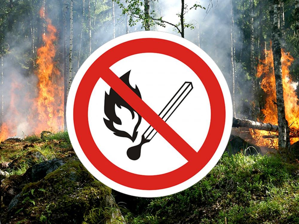На территории Мирнинского городского поселения действует особый противопожарный режим!