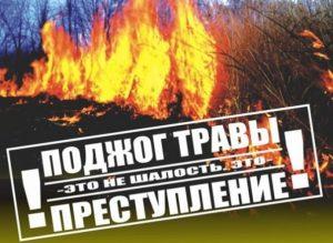 Поджог травы – это не шалость, это преступление!