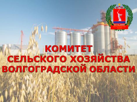 Комитет сельского хозяйства Волгоградской области проводит селекторное совещание