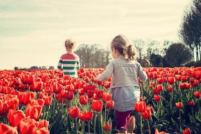Памятка родителям: Лето и безопасность наших детей