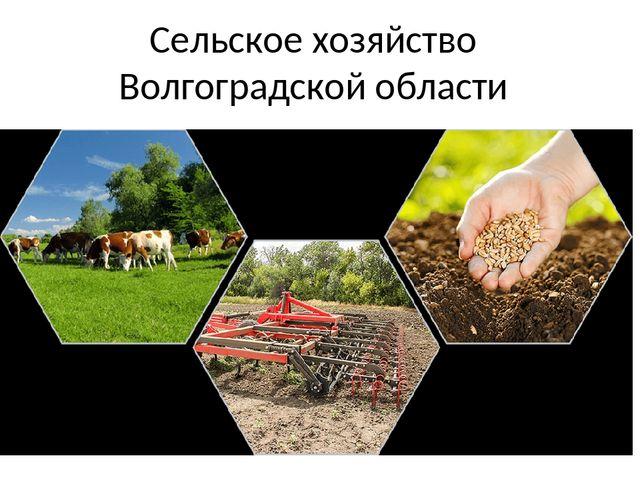 Комитет сельского хозяйства Волгоградской области по итогам совещания (в режиме видеоконференцсвязи), состоявшегося 07.04.2021, доводит следующую информацию