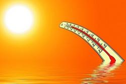 Рекомендации для населения при жаркой погоде