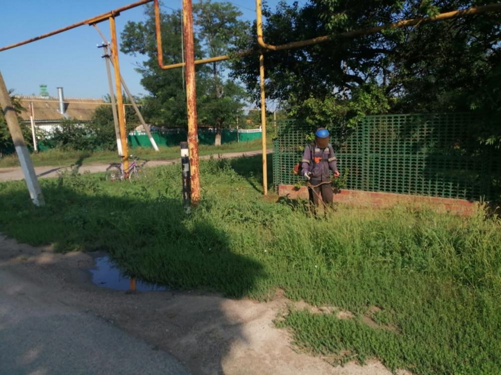 Продолжительная жара и прошедший дождь, заставили рабочих МУ «Забота» практически каждый день заниматься покосом сорной травы.