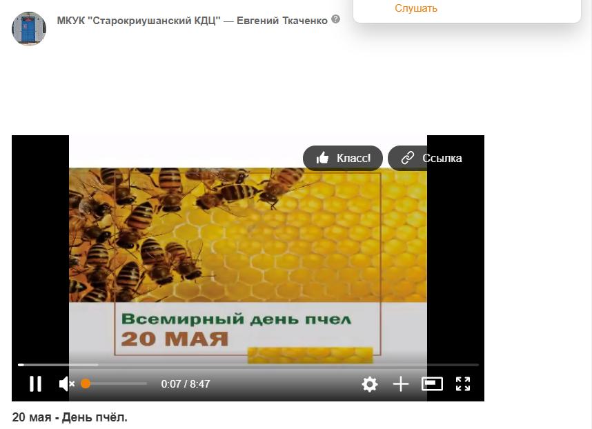 20 мая - День пчёл