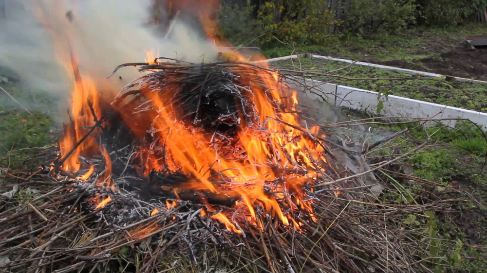 Порядок сжигания мусора, травы, листвы и иных отход, материалов или изделий.