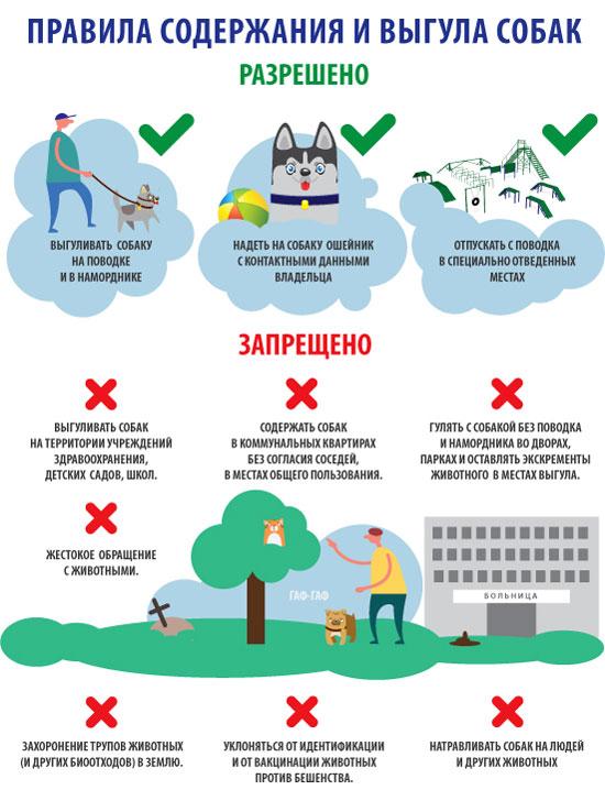 Правила обращения с животными