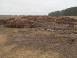 Деградация почв. Ее причины, последствия и методы недопущения