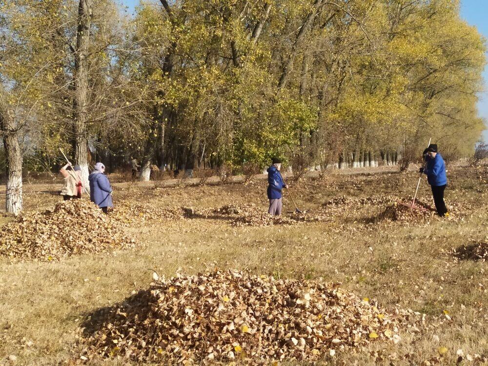 5 сентября 2020 года  на территории Гвазденского сельского поселения прошла экологическая акция по уборке территории от мусора..