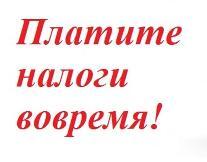 1 декабря - срок уплаты имущественных налогов для физических лиц!
