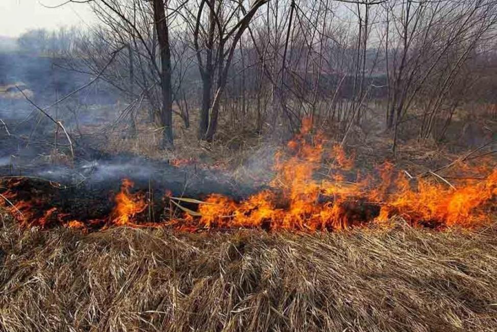 О профилактике пожарной безопасности в весенний период