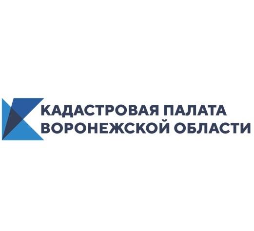 Воронежцам расскажут о выездном приеме документов по услугам Росреестра.