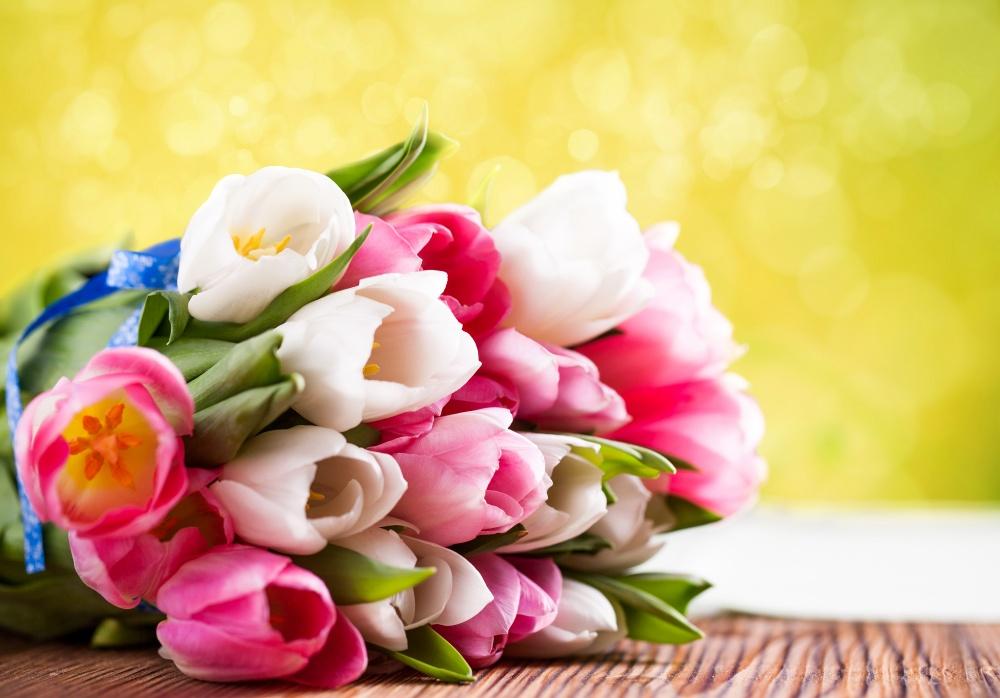8 марта в Никольском  СДК состоялся праздничный концерт, посвященный женскому дню