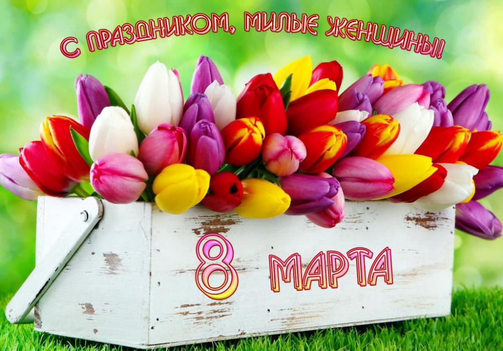 Поздравление главы поселения с наступающим женским днем 8 Марта!