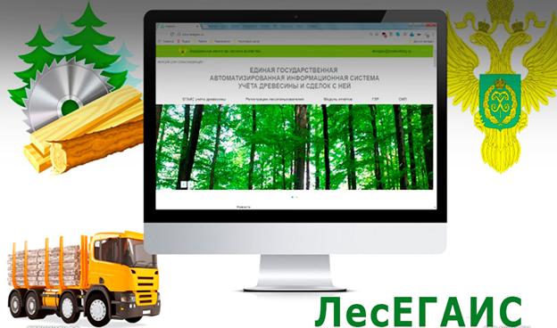 О необходимости дополнительного информирования по внесению сведений в ЛесЕГАИС