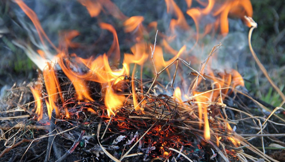 Порядок использования открытого огня и разведения костров  на землях Таловского городского поселения