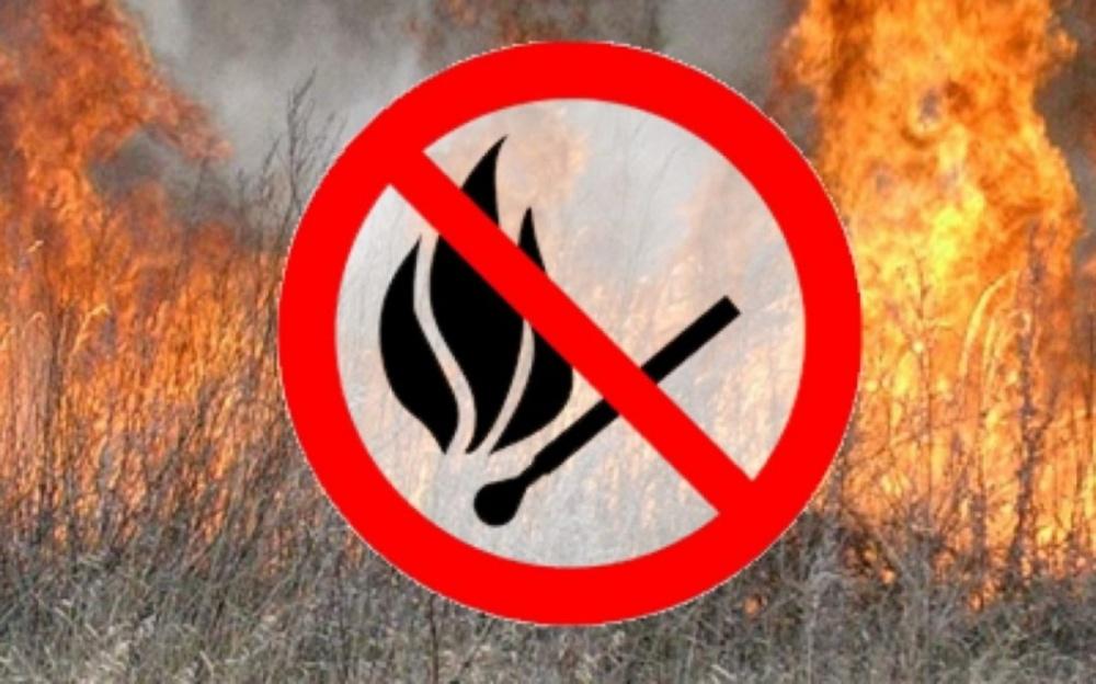 Информация по противопожарной безопасности