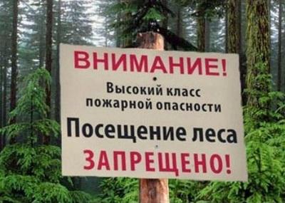 Внимание жителям Воронежской области!