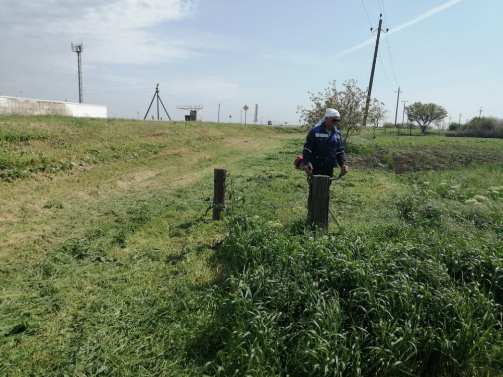 В станице Камышеватской косят траву и наводят санитарный порядок