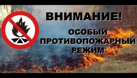 Установлен особый противопожарный режим