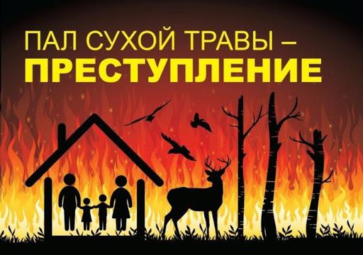 Меры предосторожности при обращении с огнем и разведении костров в пожароопасный период