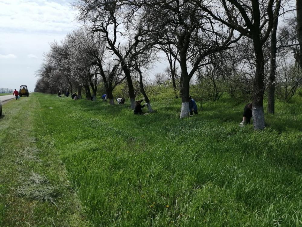 28 и 29 апреля на территории Камышеватского сельского поселения состоялся очередной субботник.