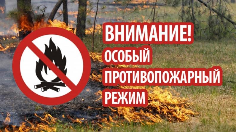 На территории Нюксенского муниципального района установлен особый противопожарный режим