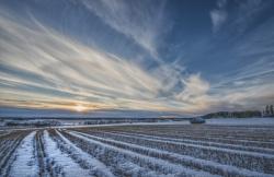 Снегозадержание как важный фактор повышения урожайности сельскохозяйственных культур