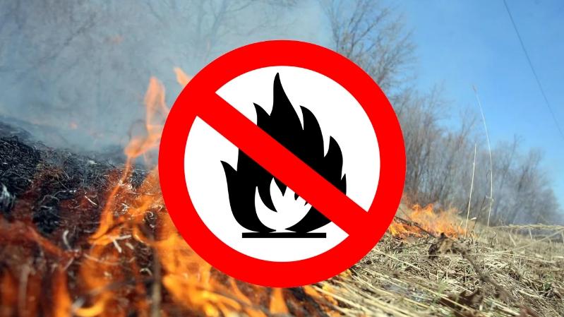 ВНИМАНИЕ!!!! Установлен 4 класс пожарной опасности, походы в лес ЗАПРЕЩЕНЫ!!!