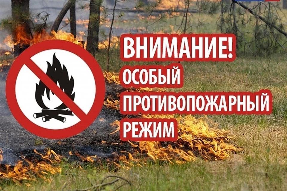 «На территории Орловской области введен особый противопожарный режим»