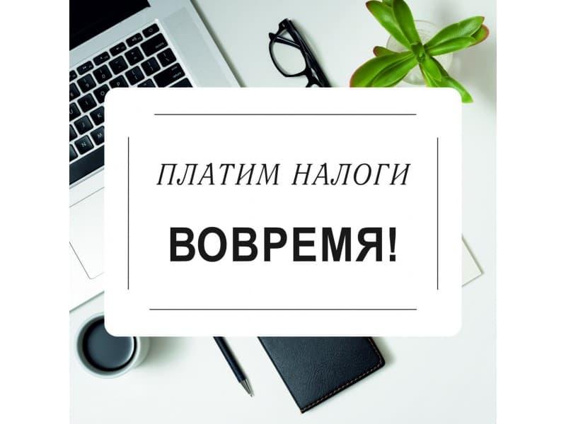 В Самарской области начали рассылать уведомления о налогах за 2019 год