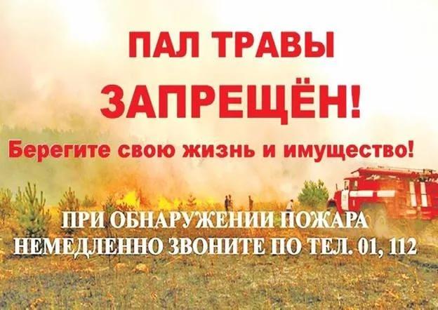 МЧС. Остановись, не поджигай сухую траву!