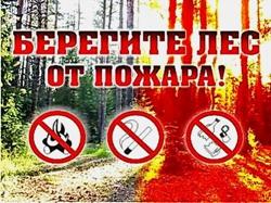 Отдел МВД России по Волжскому району напоминает Вам, быть предельно осторожными с огнем в лесу