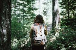 Рекомендации для посетителей лесов
